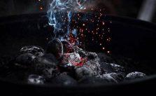 charbon actif coeur cholestérol hypertension