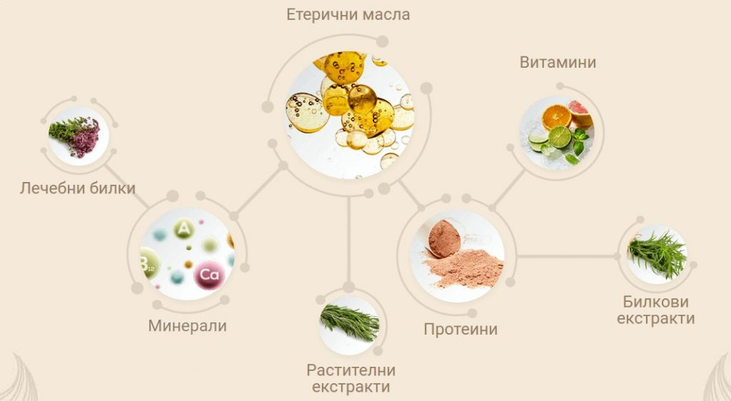 composition de cheveux de bonheur - huiles essentielles, herbes médicinales, minéraux, protéines, extraits de vitamines