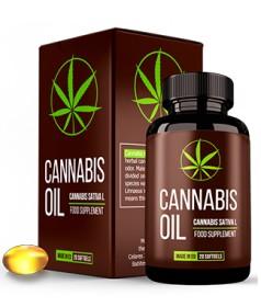 Huile de cannabis pour les articulations et le diabète France