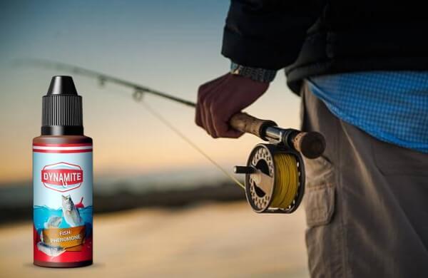 canne à pêche, poisson
