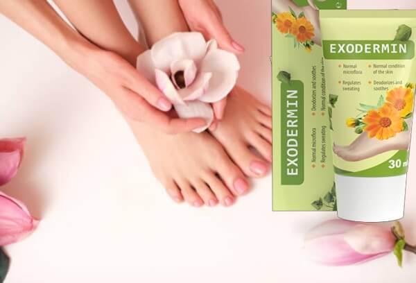 Crème exodermine pour les ingrédients des champignons des pieds