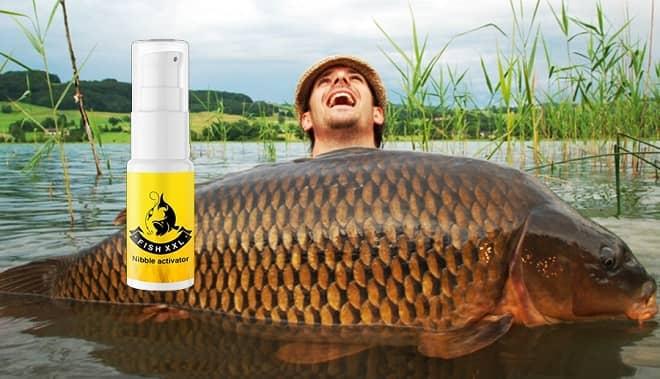 fish xxl avis et prix France