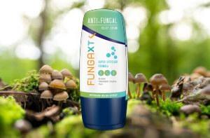 FungaXT, champignon