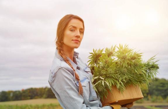femme, chanvre, cannabis