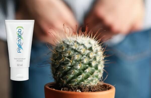 crème proctolab, hémorroïdes, cactus