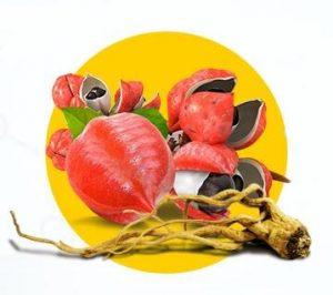 guarana dans la composition des gélules Reduslim