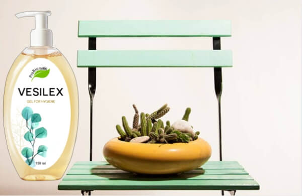 Vesilex, table avec cactus