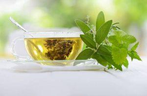 thé de prêle et thé vert
